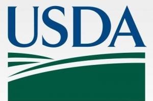"""USDA доклада не дава много """"фураж"""" на биковете"""