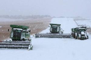 Арктично време в САЩ подкрепя цените на зърнените пазари