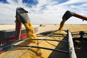 Зърненият експорт на Украйна изпреварва с 6Ммт миналогодишния