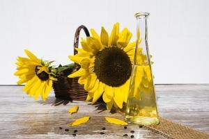 Производството на растителни масла в Русия нараства с 15%