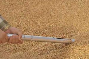 Русия обмисля система за контрол при продажбите на зърно