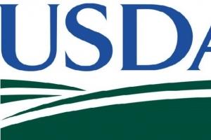 USDA: Реколтата от слънчоглед в Русия нараства до 15.3Ммт