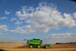 Пшеница реколта 2020 – дойде ли време да се продава?