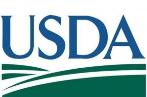USDA понижават производството на пшеница и царевица в Света