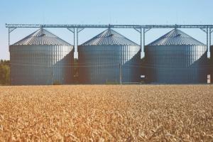 Приличен отскок за пшеницата и добро поскъпване на соята в САЩ