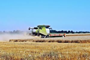 Хърватска прибира по-голяма зърнена реколта