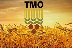 Турция обяви търг за хлебна пшеница