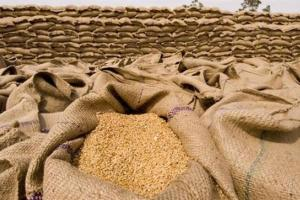 GASC отново купува пшеница, която се оказва по-скъпа