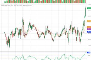 Зърнените пазари продължават с параболично поскъпване