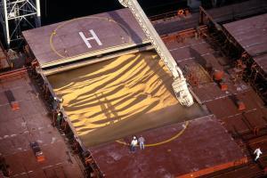 Фуражни заводи от Корея ще внасят фуражна пшеница и царевица