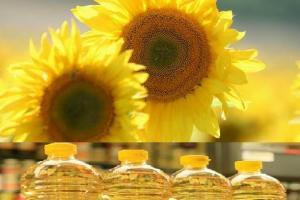 Вносът на слънчогледово масло в Индия спада на 5 годишно дъно