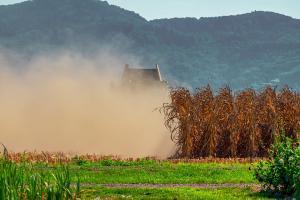 През 2020/21 Сърбия е прибрала рекордна зърнена реколта