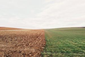 Съществува повишен риск от засушаване в европейската част на Русия