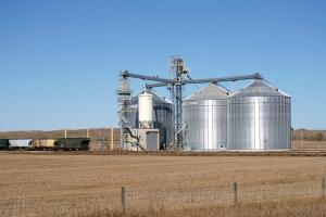 Осезаема корекция на зърнени и маслодайни в края на миналата седмица