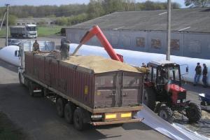 Българска пшеница е предложена на търг в Йордания