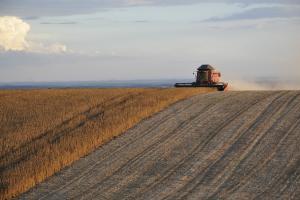 Неблагоприятно време в Южна Америка подкрепя зърнените пазари