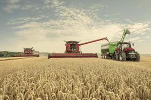 Настроенията при пшеницата на MATIF и CBOT отново са различни