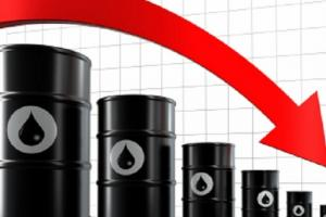 Срив на петрола потиска всички зърнени пазари