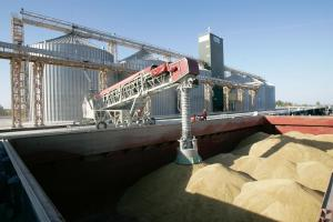 Южна Корея договаря внос на фуражна пшеница за октомври