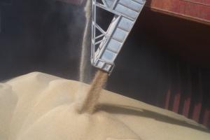 Вносната цена на хлебната пшеница за Алжир пропада