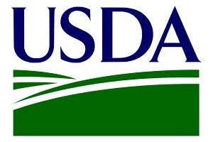 Зърнените пазари почти не реагират на USDA доклада