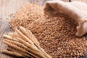 Индонезия обявява търг за фуражна пшеница