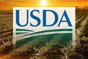 USDA очаква рекордно производство на соя и слънчоглед