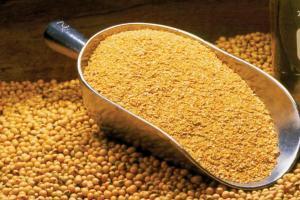 Южна Корея договаря внос на соев шрот за ноември 2021