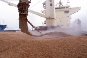 Египетският търг за хлебна пшеница е спечелен от северните ни съседи