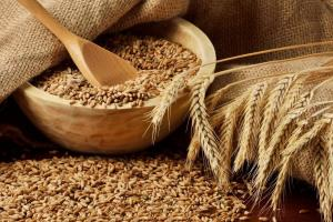IKAR повишават прогнозата си за производството на пшеница в Русия
