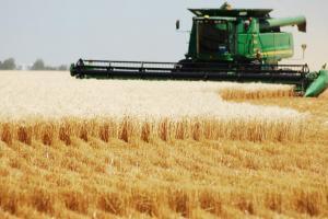 USDA не пропусна да изненада с оценката си за реколтите на пшеница в Русия