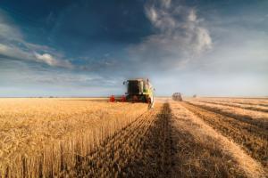 САЩ започва жътвата на пшеница с по-бавни темпове