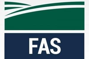 USDA очакват 41% ръст в производството на пшеница в Румъния