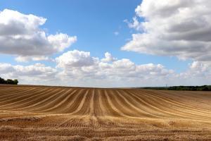 Септемврийските контракти на пшеница MATIF не са далеч от тримесечното дъно