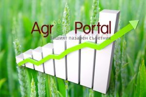 Ще помогне ли времето за продължаващо поскъпване на зърнените пазари?