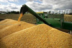 Генерално отстъпление на международните зърнени борси