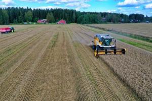 В африка немската пшеница трупа точки пред френската суровина