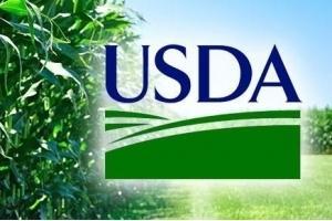 Изненадващо USDA повишават добивите от царевица и соя в САЩ