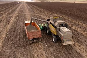 USDA виждат силен внос на слънчоглед, масло и шрот в Турция
