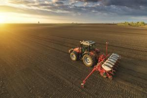 Заради валежите сеитбата на пшеницата в България остава бавна